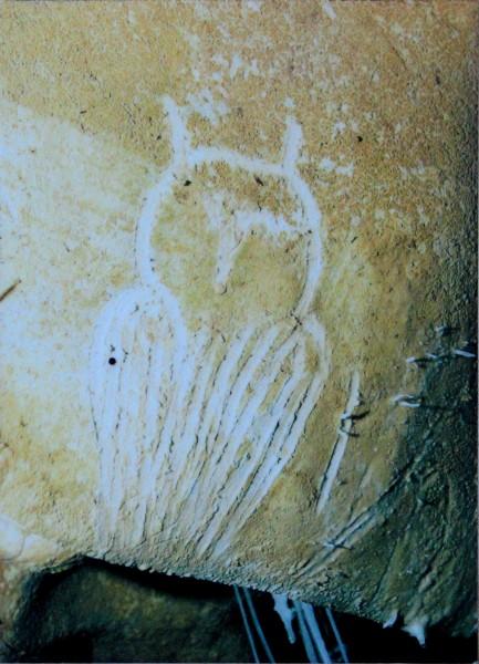 Gravura de coruja, Chauvet Cave (réplica)