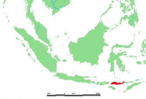 Ubicación de la Isla de Flores, Indonesia