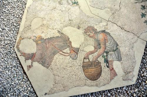 Hombre que alimenta la mula, mosaico bizantino