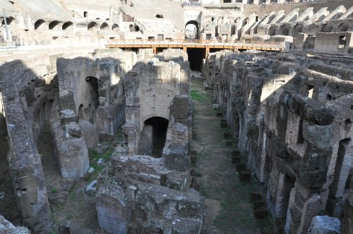 Colosseo (Hypogea)