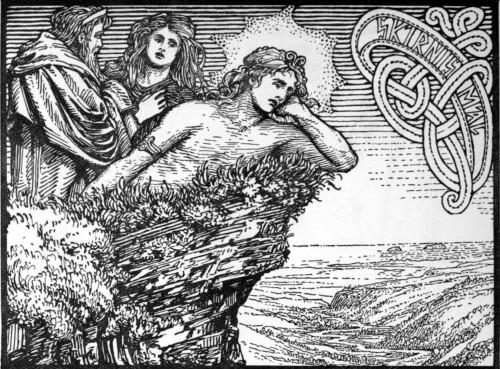 A sensação de amor de Freyr