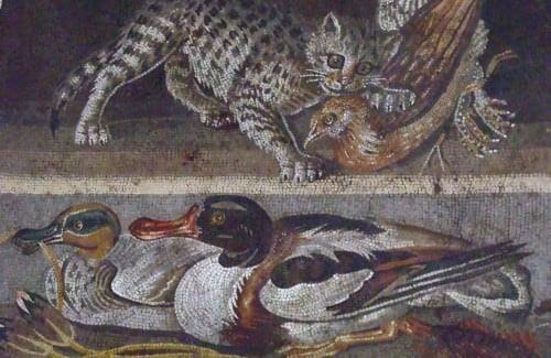 Mosaico, Pompéia