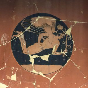 Eros (Egisto Sani (used with permission))