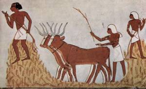 Threshing of Grain in Egypt (The Yorck Project Gesellschaft für Bildarchivierung GmbH)